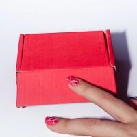 Коробка картонная 100 х 80 х 40 мм, самосборная