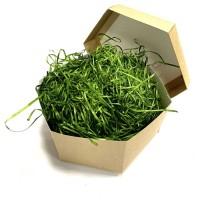 Наполнитель для коробок 100 г, древесный зеленый
