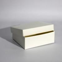 Коробка подарочная 200 х 200 х 100 мм, крышка+дно